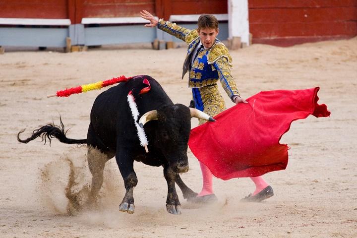 madridde gezilecek yerler - Las Ventas bullfighting arenasında boğa güreşi görüntüleri