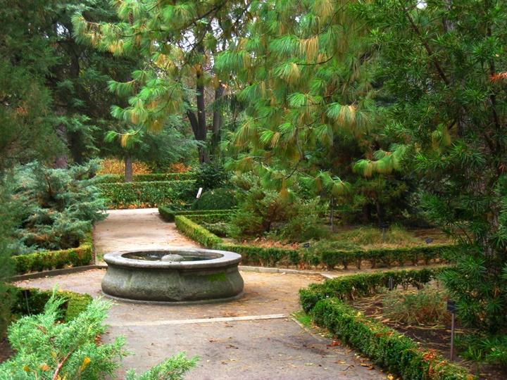 madridde gezilecek yerler - Madrid Kraliyet Botanik Parkı