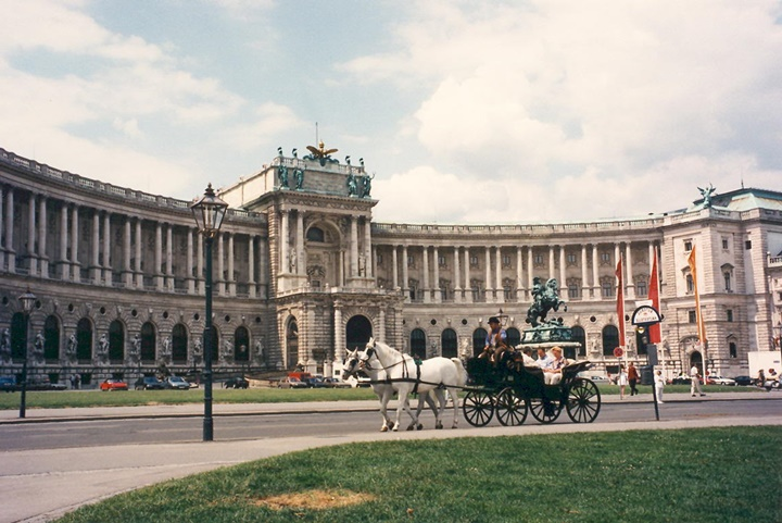 Viyana hofburg sarayı
