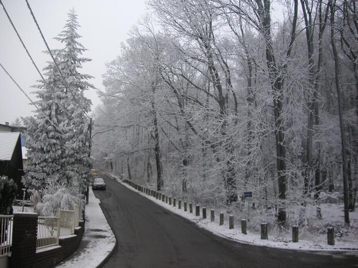 Viyanada-kış-ayları-nasıl-geçer.jpg
