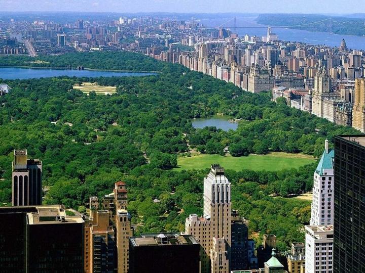 New york central park hakkında bilgi