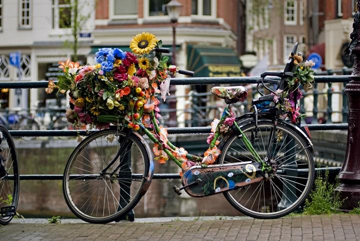 Amsterdam Şehir İçi Ulaşım