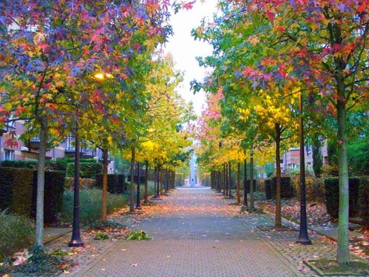 Brüksel Hava Durumu & Brüksel İçin En İyi Mevsim