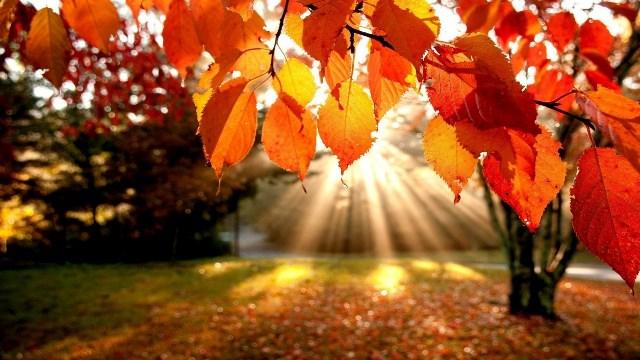 Sonbaharda Gidilebilecek Güzel Ülkeler