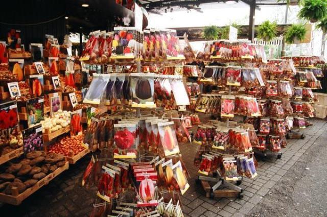 Hollanda'dan hediyelik ne alınır