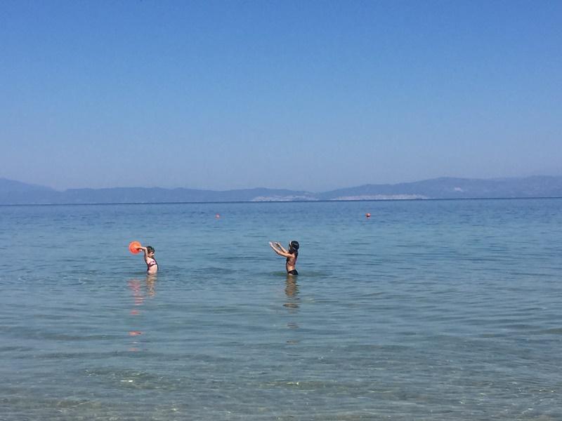Limenas beachleri