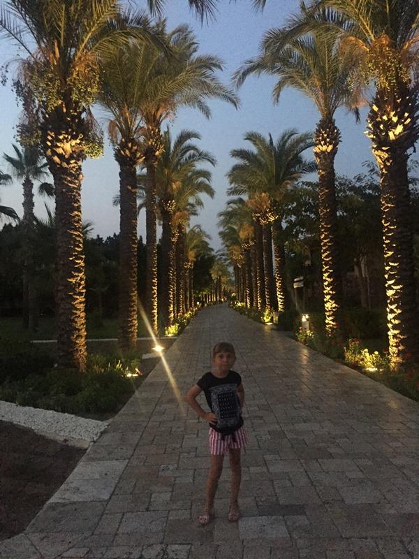 hotel tui blue palm garden