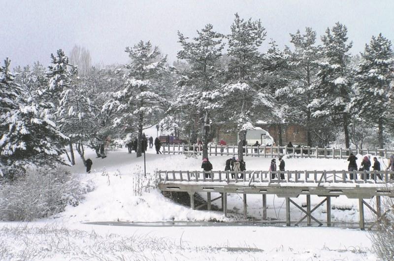 yedigöllerde kış tatili