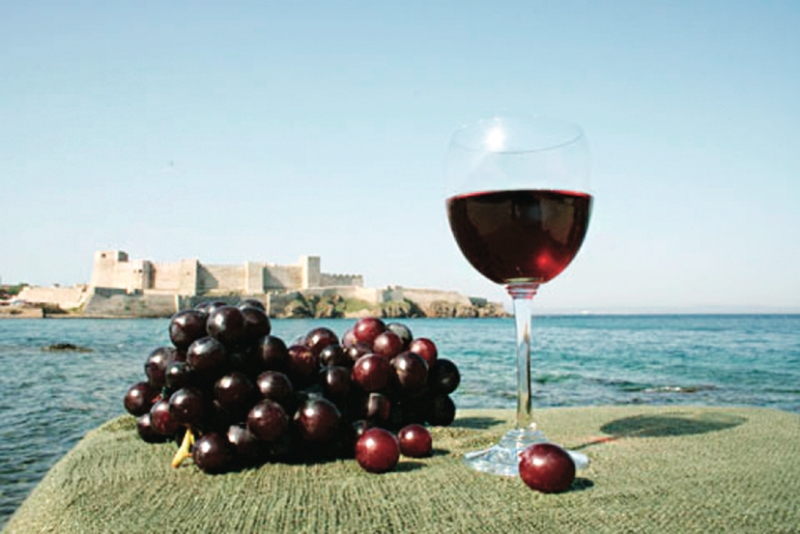 Bozcaada şarap tadım turları